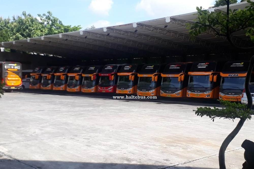 Diterpa Pandemi Covid-19, Bus Pariwisata Puasa Panjang