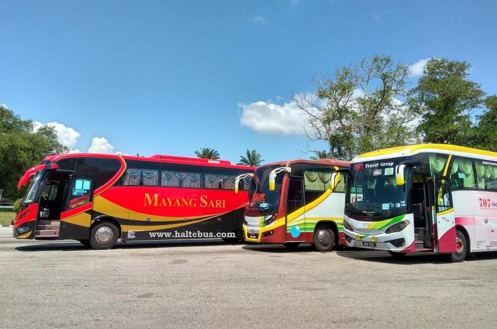 Menilik Bus Lintas Negara Yang Mengandalkan Jalan Tol