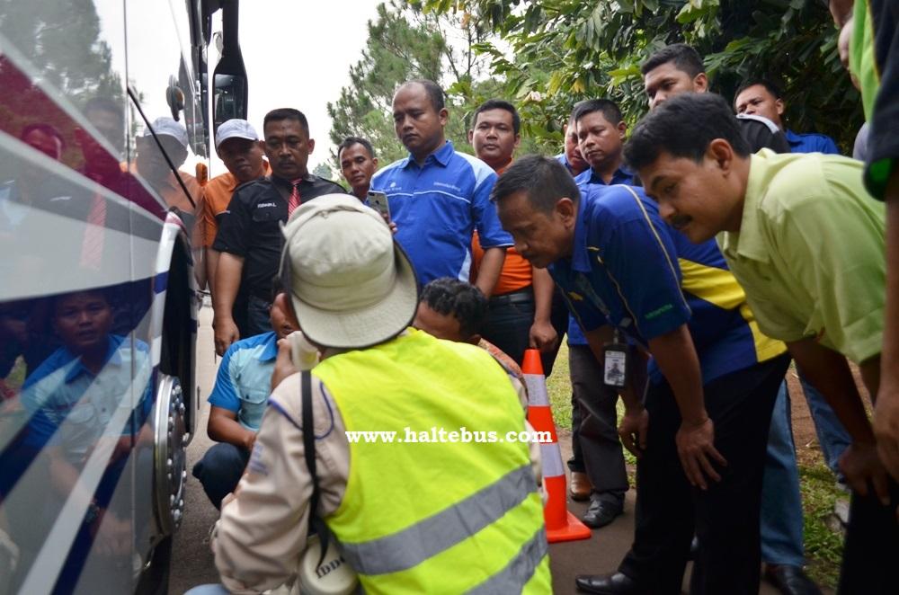 Kemenhub Ajak Masyarakat Tanyakan Kelengkapan Bus Yang Disewa